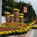 Quà xuân trên đất Việt