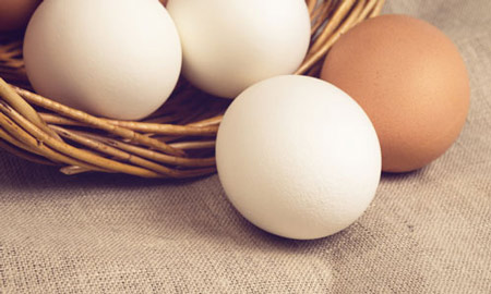 1. Trứng