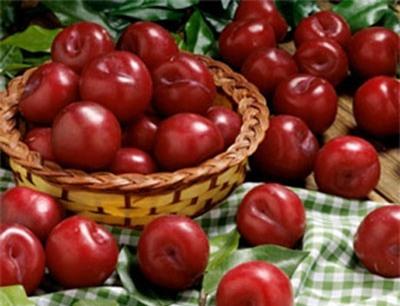 rau quả không nên ăn vào mùa hè