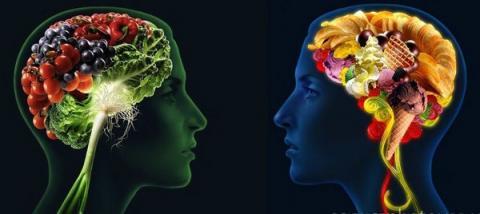 Những nhóm thực phẩm giúp não nhạy bén 1