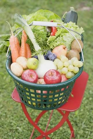 8 nguyên tắc dinh dưỡng cho trẻ sơ sinh mẹ không nên bỏ qua - hình 3