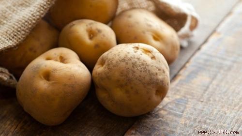 Khoai tây là loại tinh bột giàu chất xơ và dinh dưỡng nhưng lưu ý khi chọn khoai tây để tránh loại đã mọc mầm - Ảnh: Shutterstock