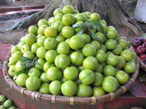 Những loại trái cây mẹ bầu phải thận trọng khi ăn
