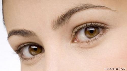 Khám bệnh qua đôi mắt