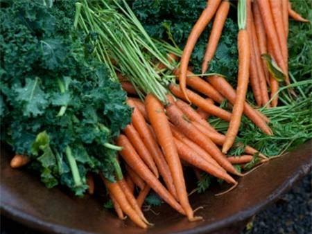 Thực phẩm có lợi cho cả sức khỏe và sắc đẹp 2