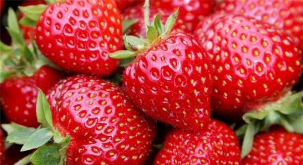 Dâu tây chứa nhiều vitamin C có tác dụng chống ôxy hóa...