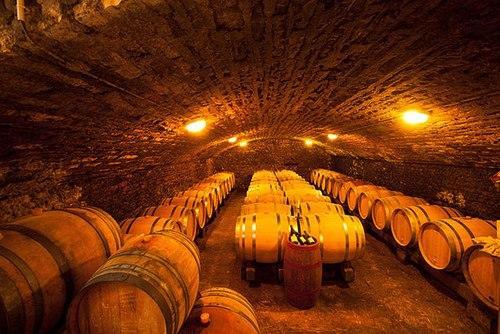 Hầm rượu vang nho tại Pháp