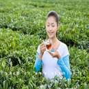 Những thời điểm phụ nữ nên tránh uống trà