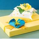 Quà tặng sức khỏe: Vì sao đang trở thành xu hướng quà tặng thời thượng?