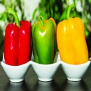 4 Loại thực phẩm chứa nhiều collagen nhất