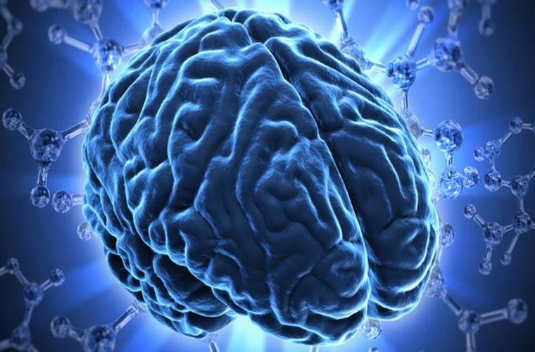 Thuốc bổ não focus factor giá bao nhiêu ? ở đâu bán ?