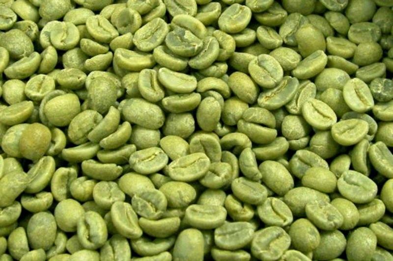 Hạt cà phê xanh chứa chất chống oxy hóa giúp bảo vệ và trẻ hóa tế bào da và làm mềm da