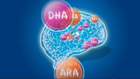 DHA tốt cho trí não và mắt của thai nhi