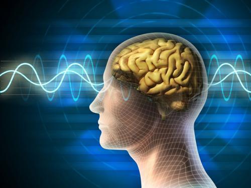 Trunature Ginkgo Biloba  duy trì máu huyết chảy về não nhằm tăng độ minh mẫn