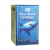 Costa Shark Cartilage – Thuốc hỗ trợ điều trị xương khớp, chiết xuất tinh khiết vi sụn cá mập