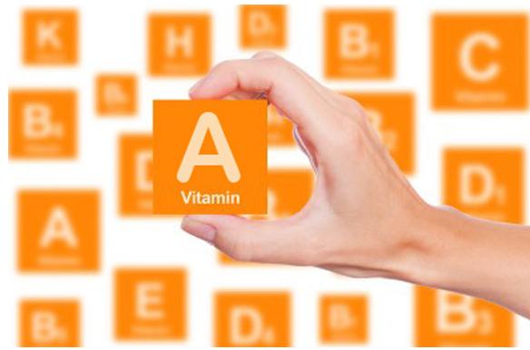 Vitamin A bồi bổ thị giác và cơ thể, cần thiết cho chức năng của tế bào võng mạc
