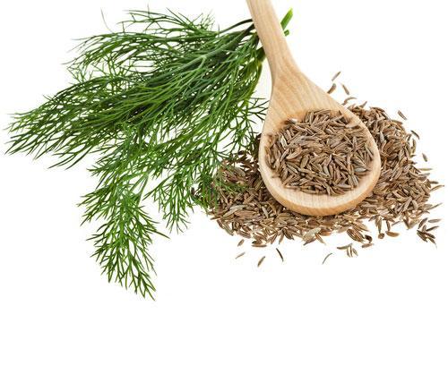 7 loại thảo dược giảm cân hiệu quả