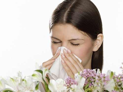 Các triệu chứng hắt hơi, chảy mũi, đau đầu làm bạn khó chịu
