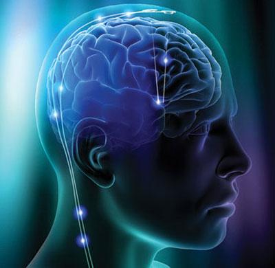 Não bộ của bạn cần bổ sung đầy đủ chất dinh dưỡng để có sự minh mẫn tuyệt đối là điều cần thiết