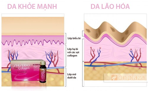 Nước uống bổ sung collagen- Collagen Enriched Shiseido