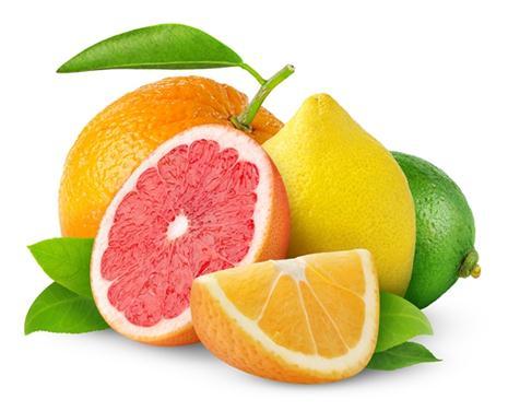 Vai trò của vitamin c đối với cơ thể