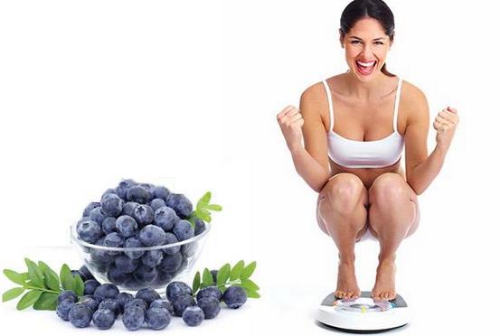 Việt Quất có tác dụng giảm mỡ bụng hiệu quả