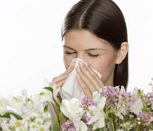 Mũi nghẹt, mũi chảy nước làm ảnh hưởng đến công việc cũng như sinh hoạt của bạn.
