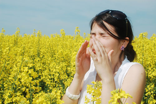 Dị ứng đường hô hấp là do phản ứng quá nhạy cảm của thần kinh và các chức năng hóa học