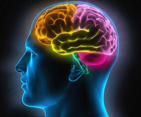 Mất ngủ, đau nửa đầu, suy giảm trí nhớ ngày càng nghiêm trọng khi gốc tự do tấn công làm tổn thương tế bào thần kinh và mạch máu não.