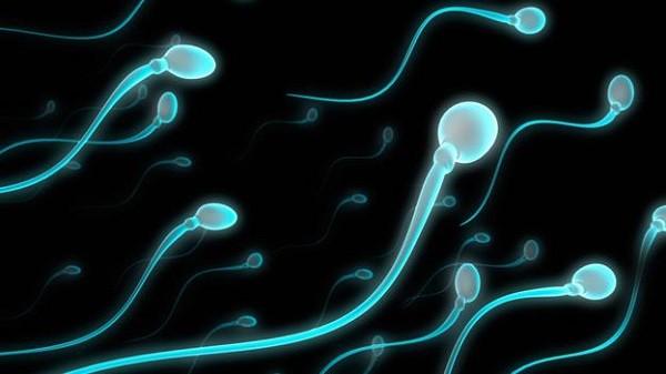 Nuốt tinh trùng có bị sao không, có mang thai không ?