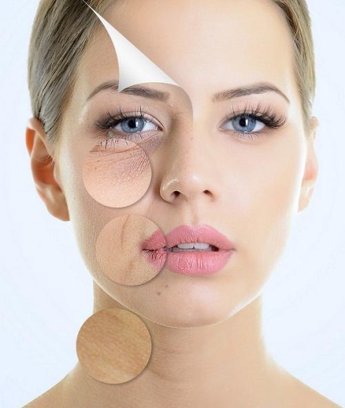 Collagen hàm lượng cao nhất, chống lão hóa da, móng, tóc và xương khớp josephine venus charge 20000