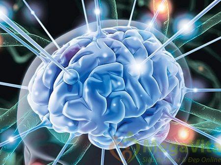 tác dụng cuả omega-3 omega-6 omega-9- với não bộ