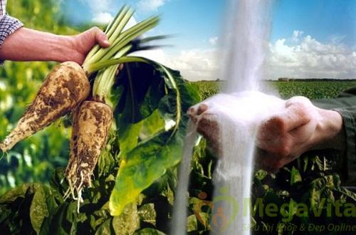 Chất xơ hòa tan bfiber 14 gói - tốt cho hệ tiêu hóa