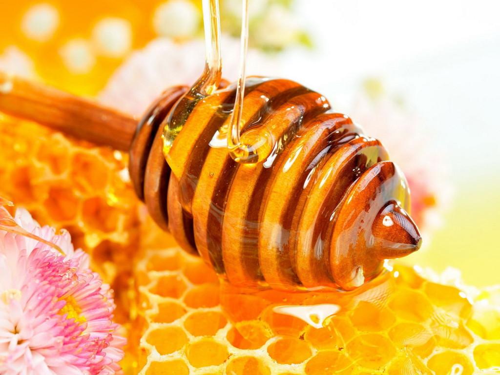 siro ho zarbee's có thành phần mật ong