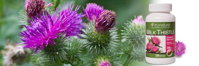Trunature milk thistle